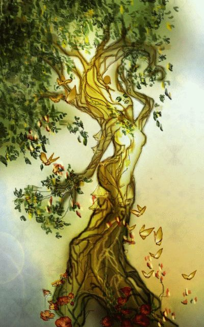 Image result for fighting dryad